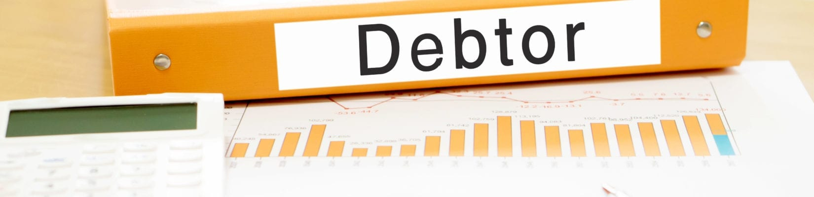 Debtor Management Help and User Guide